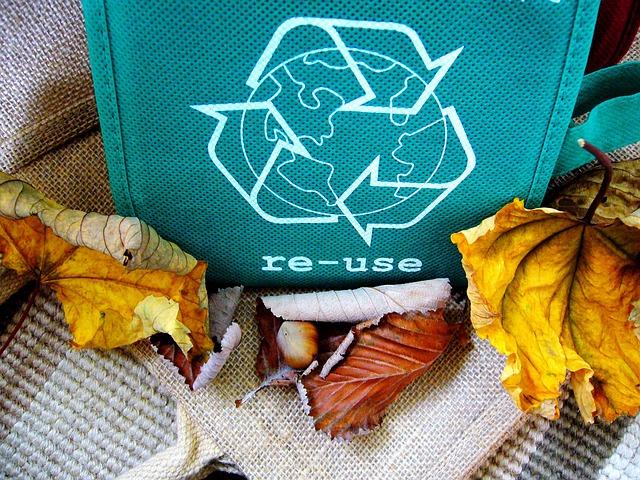 Recykling tworzyw sztucznych w Polsce – Biznes